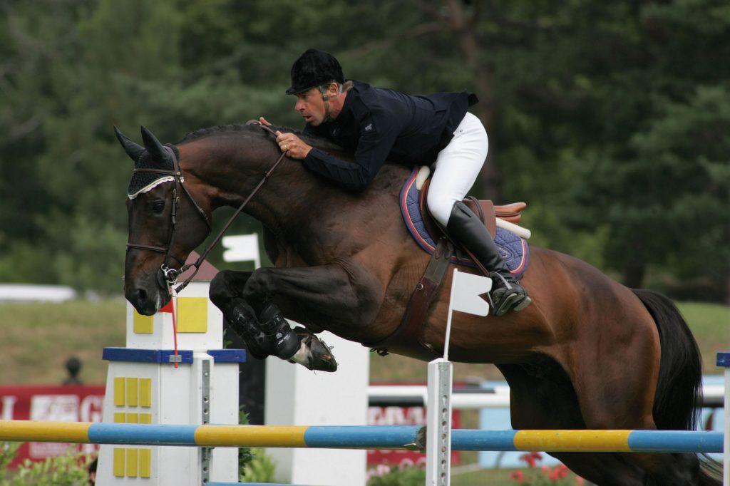 Resultado de imagen de Kannan horse